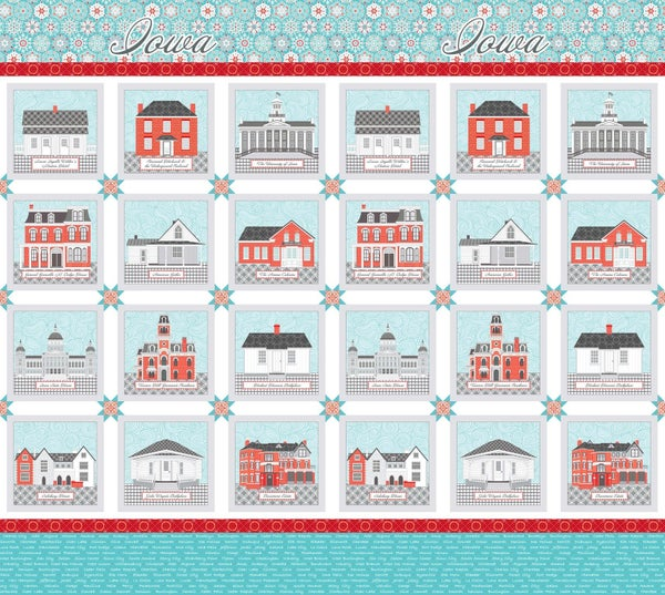 """Preorder AISH Town Square Panel 24"""" x 43"""""""