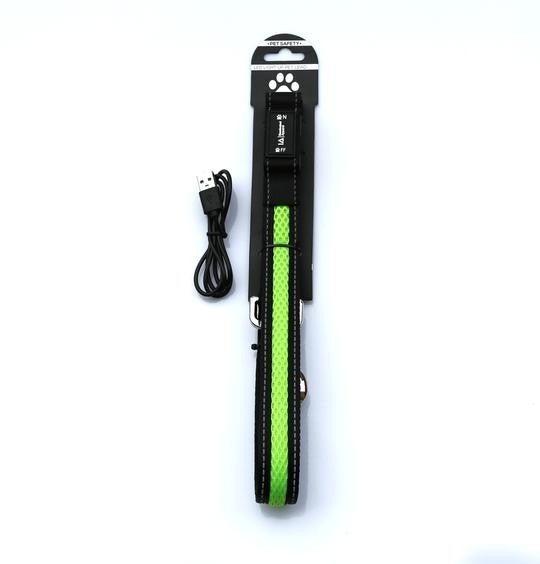 Green LED Light Up Dog Lead