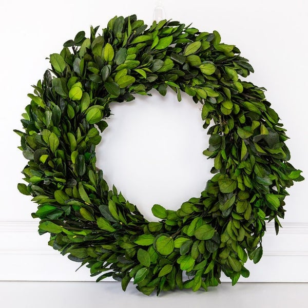 """$50 OFF - 20.5"""" Big REAL Preserved Boxwood Wreath"""
