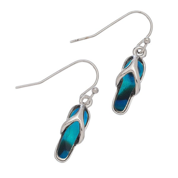 Abalone Accented Earrings