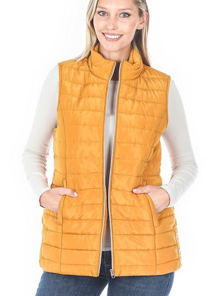 Colder Weather Vest