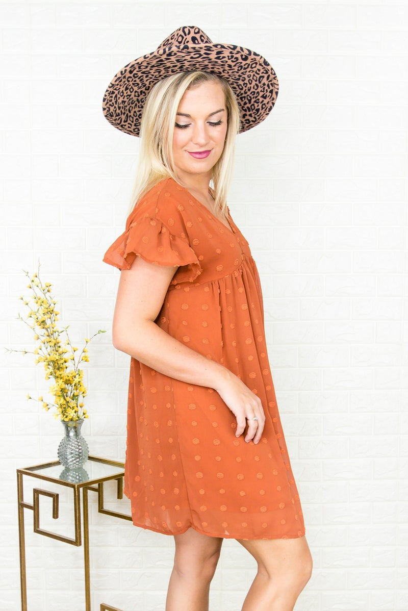 Rust Swiss Dot Dress