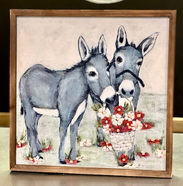 Twin Donkey Picture