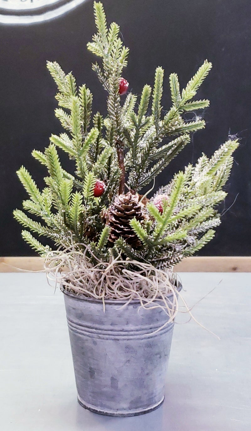 Potted Pine Tree w/ Berries