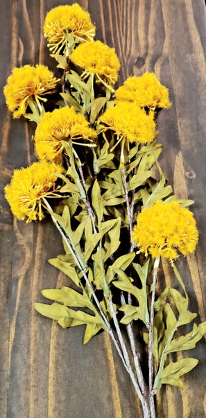 Yellow Aster Spray