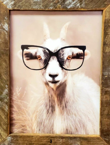Goat w/ Glasses W/ Tobacco Frame