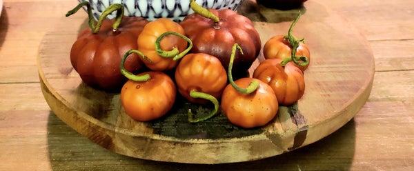 Set of 6  Small Curly Q Pumpkins