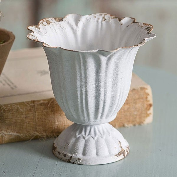 Small Scalloped Cup