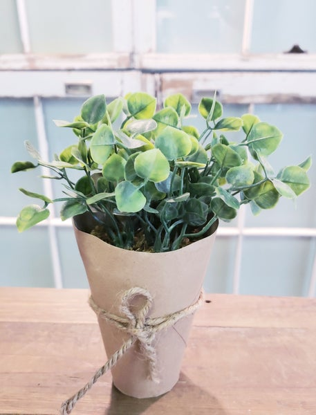 Real Feel Potted Plants