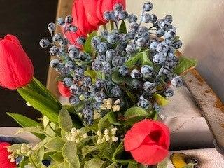 Sm Blueberries