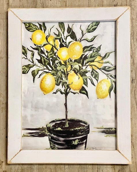 Lemon Tree Picture