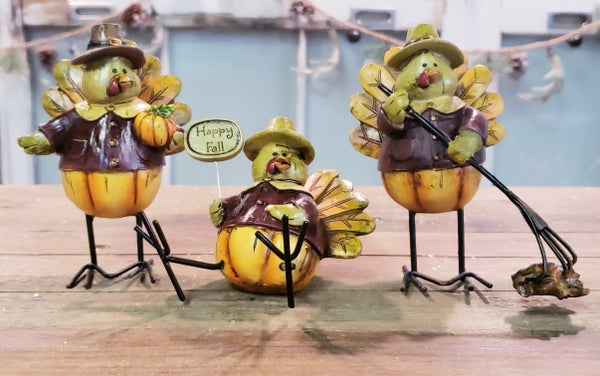 Fall Turkey Sitter