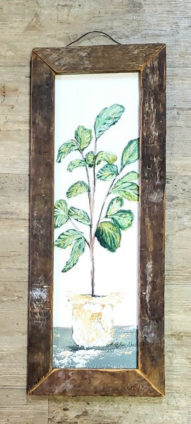 Potted Plant in Tobacco Frame