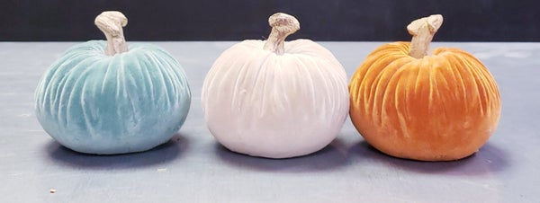 Colorful Small Pumpkins