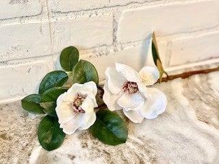Mini Magnolia Stem