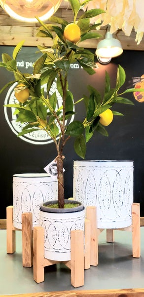 White Embossed Planter w/ Wooden Stand
