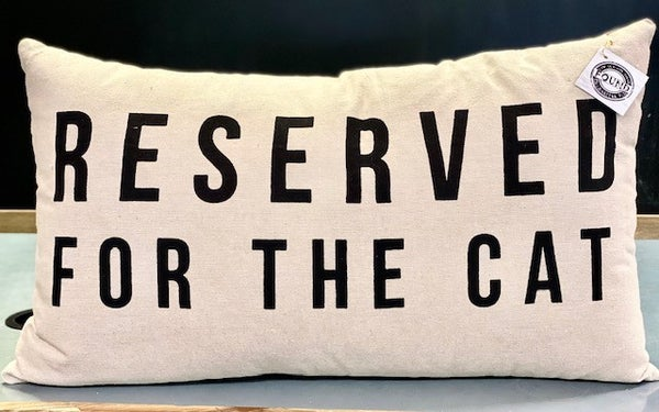 Reserved for Cat Pillow