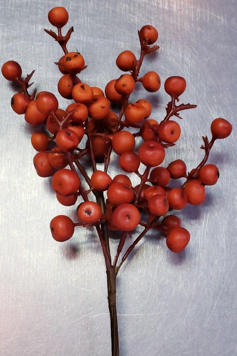 Orange Berry Pick