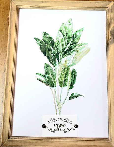 Framed Herb Picture
