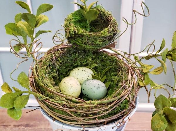 Double Nest w/ Eggs