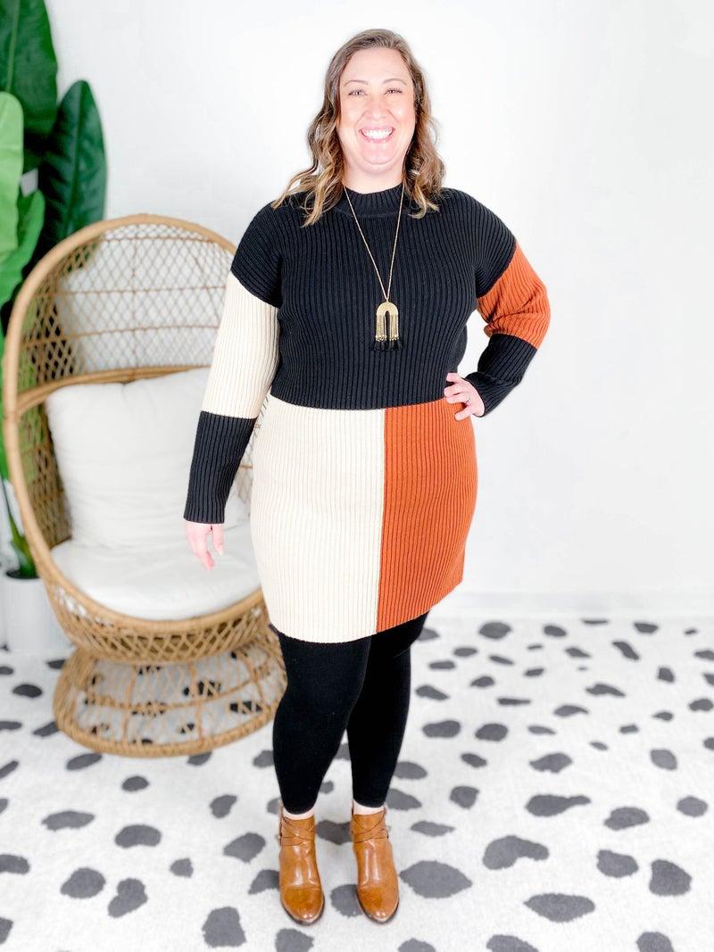 PLUS/REG Mocha & Black Color Block Sweater Dress