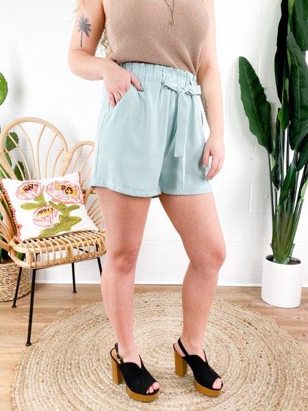PLUS/REG Mint or Mauve Paper Bag Shorts