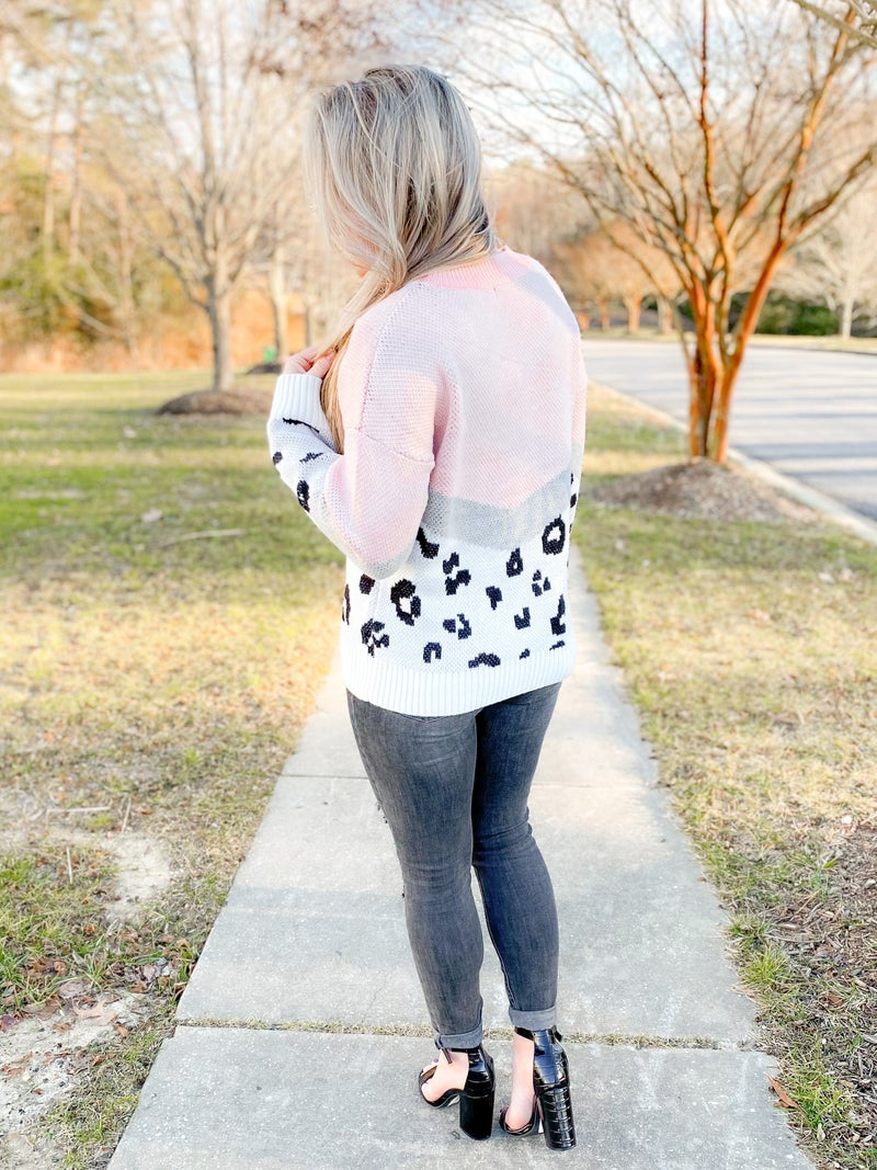 PLUS/REG Long Sleeve Color Block Sweater With Leopard Detail