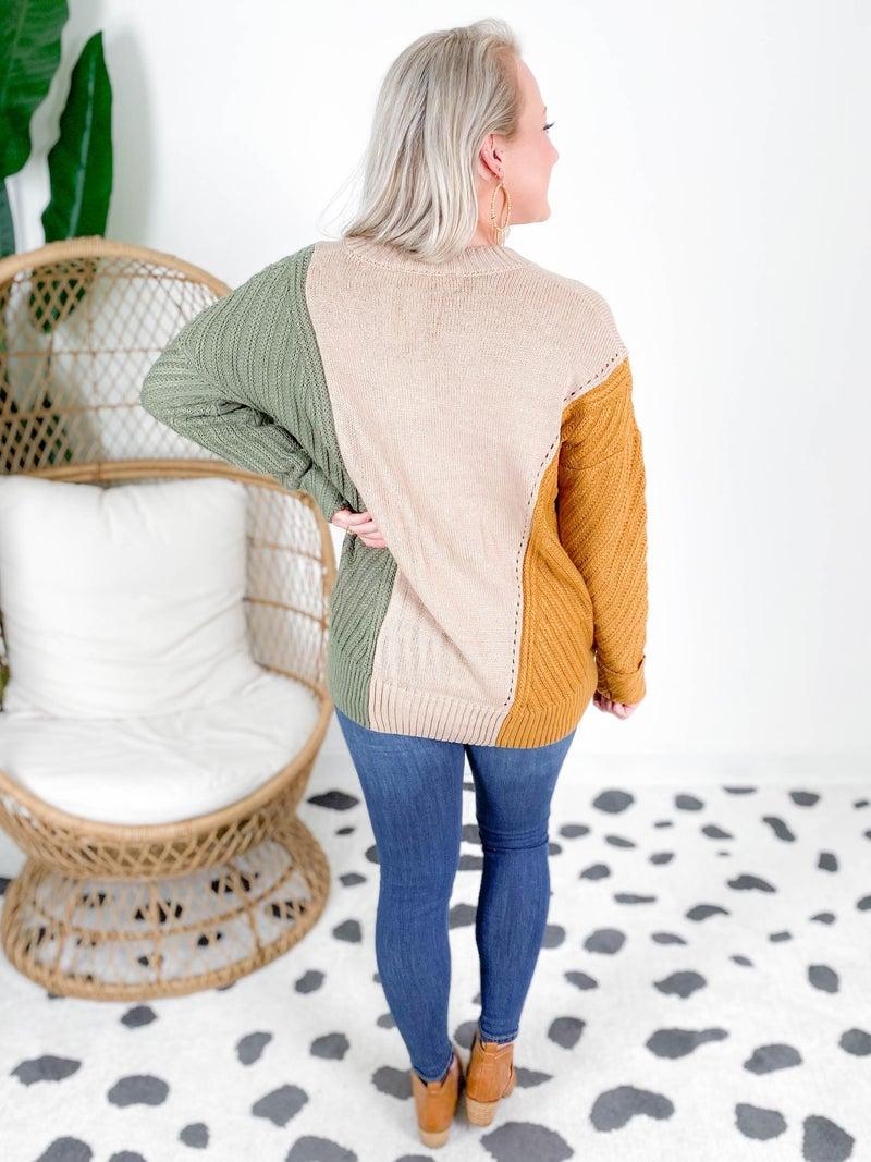 PLUS/REG Taupe Color Block V Neck Sweater