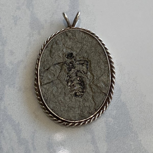 Fascinating Fossil Pendant