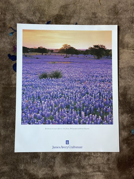 James Avery Poster Bluebonnets #2