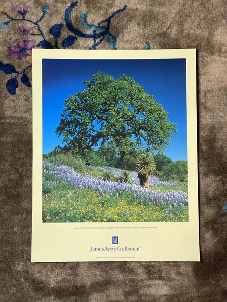 James Avery Live Oak Tree Poster
