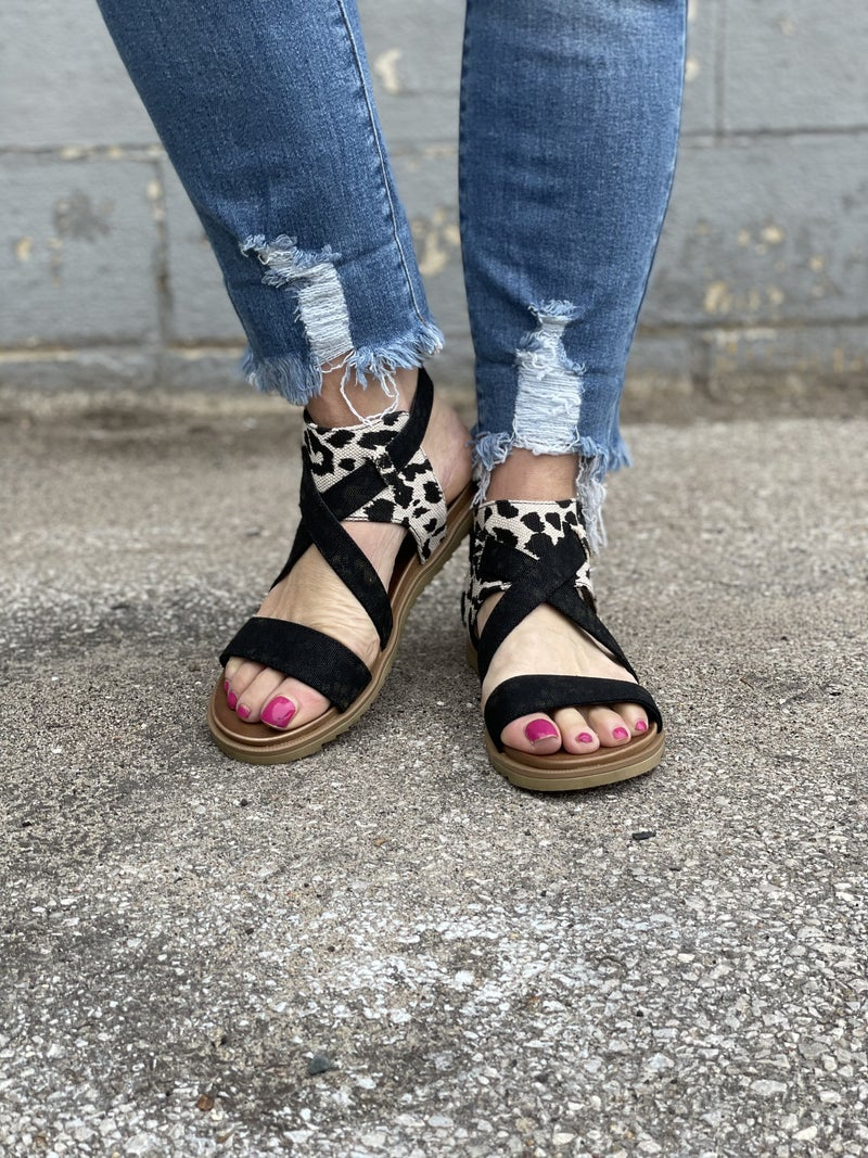 Jayla  Animal Print  Sandals