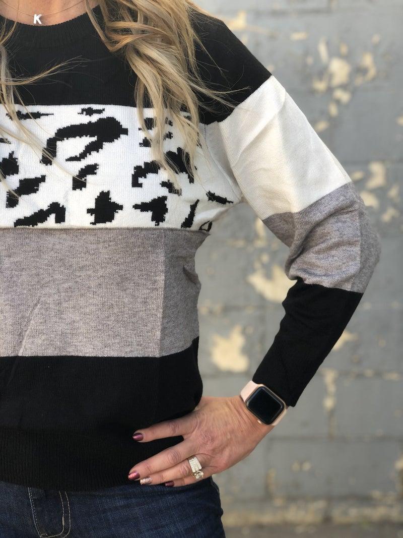 Color Block Black Animal Sweater