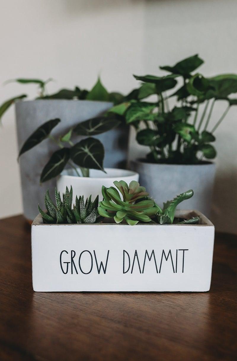 Grow Dammit Planter