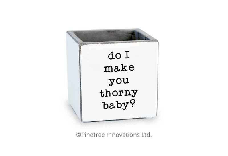 Do I Make You Thorny Baby Planter