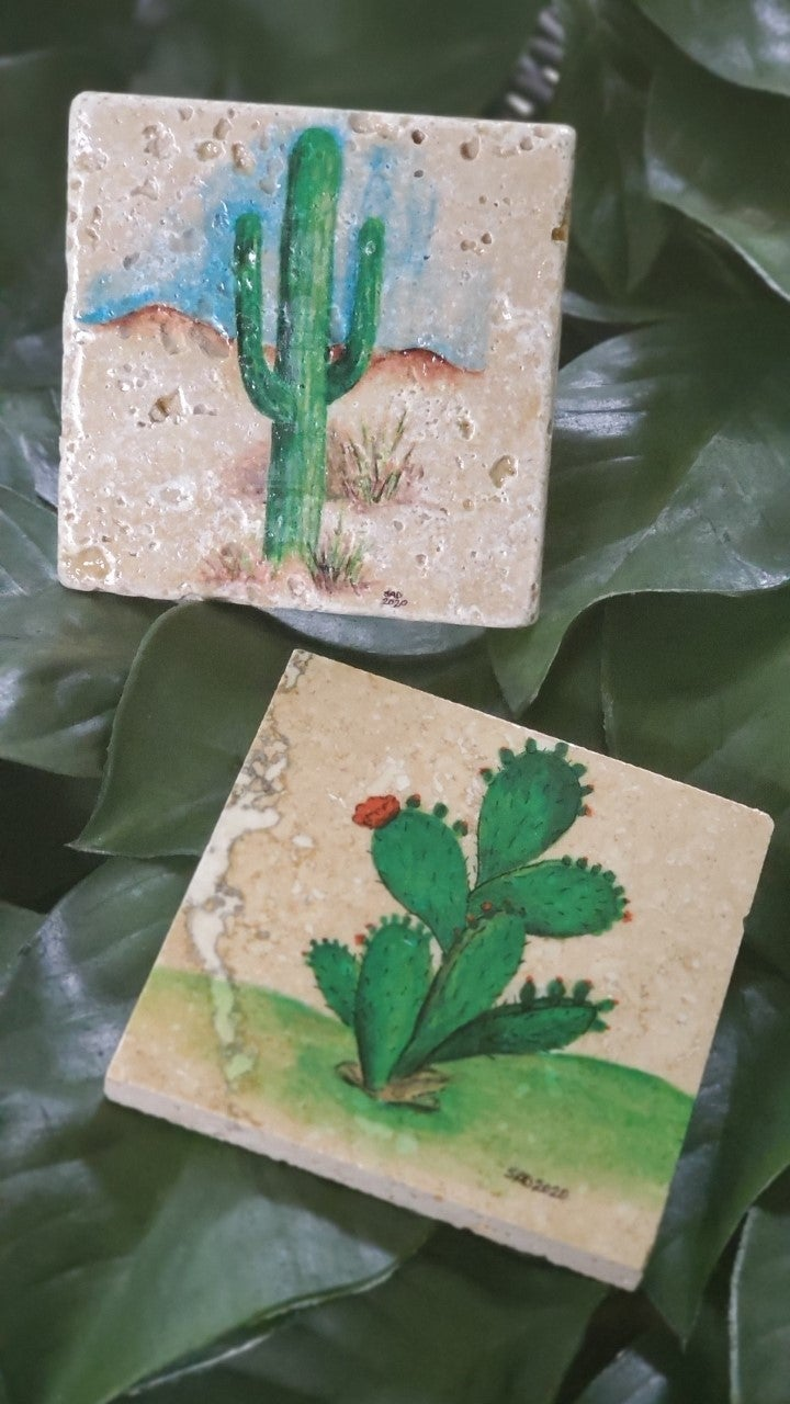 Texas Inspired Coasters (Set of 2)