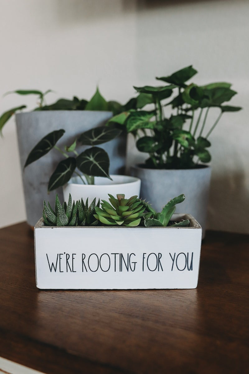 We're Rooting for You Planter