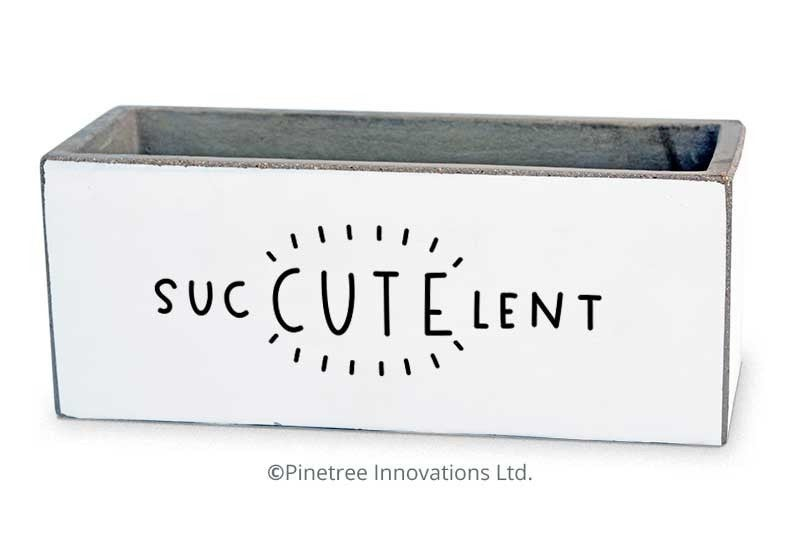 Suc-CUTE-lent Planter