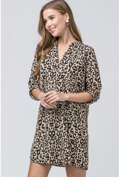 Entro Animal Print Dress