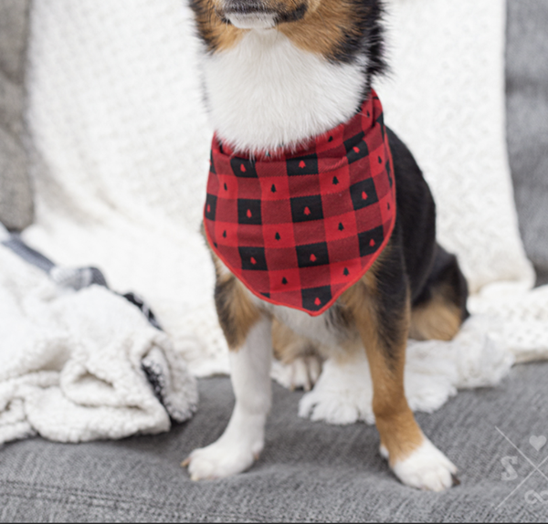 Pawfectly Plaid Bandana