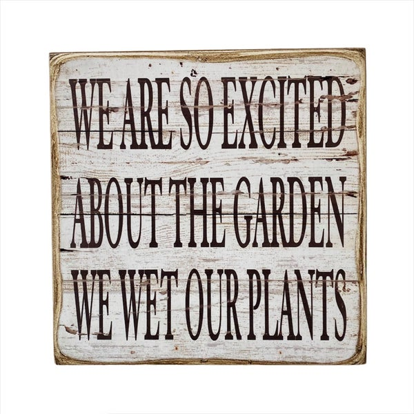We Are Excited Wall Hanging
