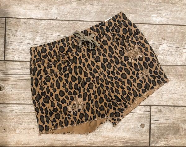 Cheetah YMI Jogger Shorts