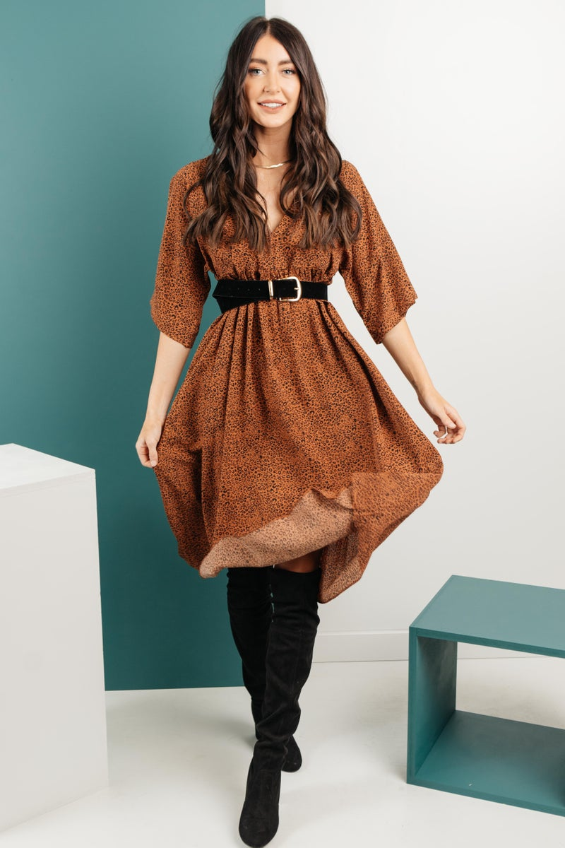 The Vienna Spotted Dress