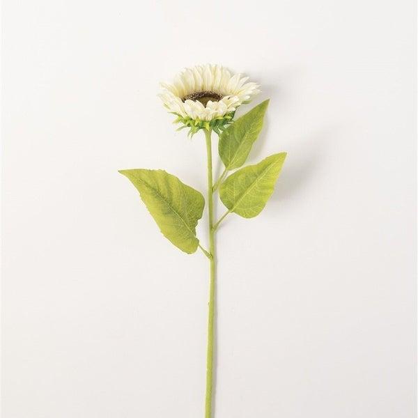Tall White Sunflower Stem