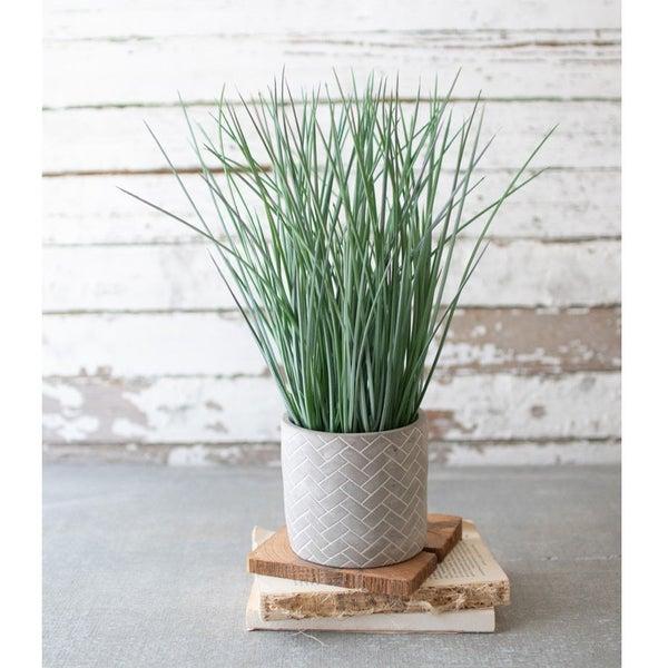 Grass In Herringbone Pot