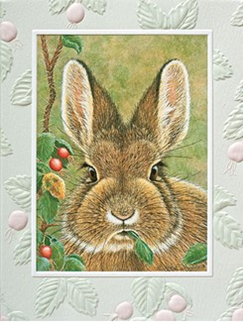 Bunny Brunch Boxed Note Cards