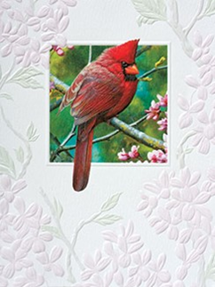 Spark of Ruby Boxed Note Cards