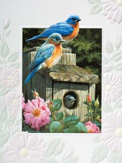Garden Bluebirds Boxed Note Cards