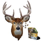 Puzzle I Am Buck