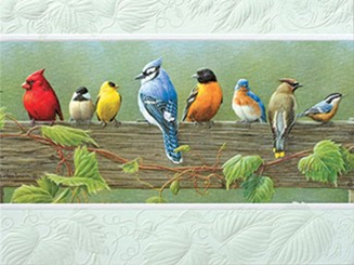 Railbirds Boxed Note Cards